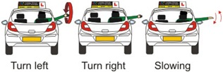 car-signaling-arm-signal